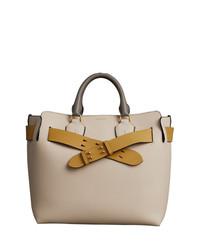 Burberry The Medium Tri Tone Leather Belt Bag