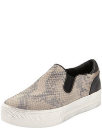 Ash Jungle Snake Print Skate Shoe