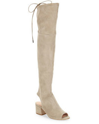 Sigerson Morrison Mason Suede Over The Knee Boots