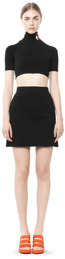 Alexander Wang A Line Mini Skirt | Where to buy & how to wear