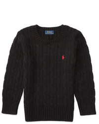 Ralph Lauren Childrenswear Boys 2 7 Long Sleeve Cable Knit Sweater
