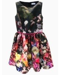 Choies Skater Dress In Floral Print
