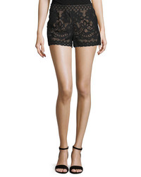BCBGMAXAZRIA Lace Mid Rise Boxing Shorts Black