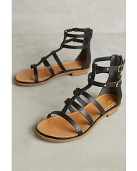 Seychelles Dalea Gladiator Sandals