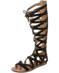 fbd764506 Women s Black Knee High Gladiator Sandals by Sam Edelman