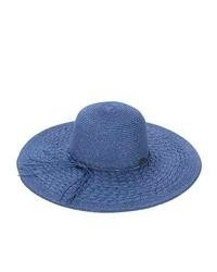 Blue Straw Hat