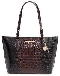 Brahmin medium 827355