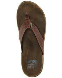 Reef J Bay Iii Flip Flop
