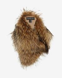 Adrienne Landau Raccoon Fur Collar