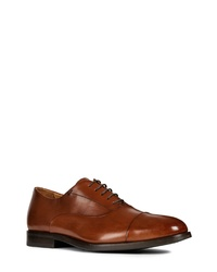 Geox Hampstead Cap Toe Oxford
