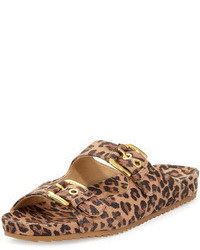 Freely leopard print buckled sandal medium 61190