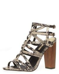 Dorothy Perkins Snake Print Gladiator Sandals