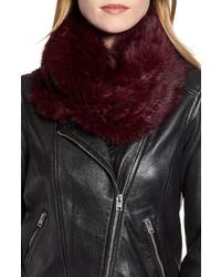 Jocelyn Genuine Rabbit Fur Infinity Scarf