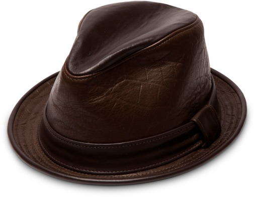 b6260ae310c Dark Brown Hats Goorin Bros. Belsky Goorin Bros.