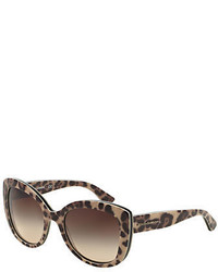 Dolce & Gabbana Enchanted Garden Leopard Cat Eye 53mm Sunglasses