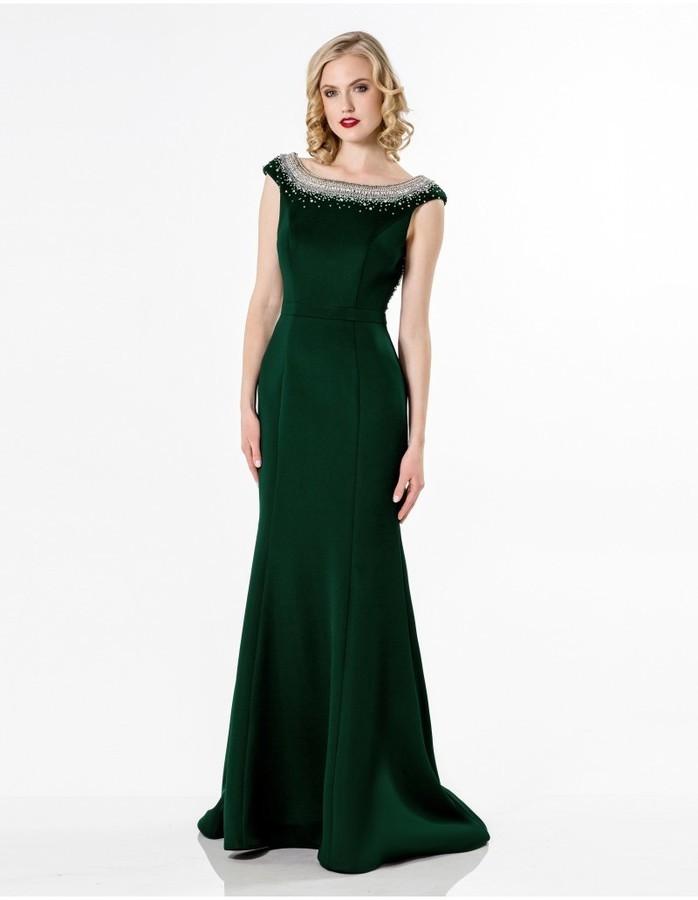 Terani Evening Crystal Sparkling Neckline Svelte Long Gown ...