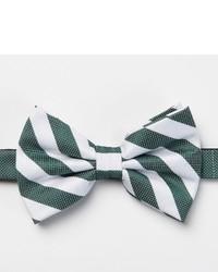 Adult Espn College Gameday Neckwear Wide Striped Pretied Bow Tie