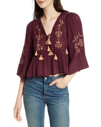 Free People Embroidered Crop Top