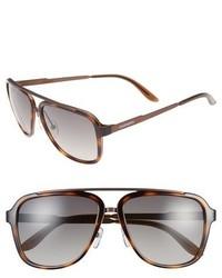 Gafas de sol marrónes de Carrera