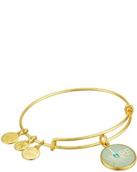 Alex and Ani Words Are Powerful Seaside More Peace Bangle Bracelet Bracelet
