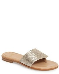 Raney flip flop medium 4064743