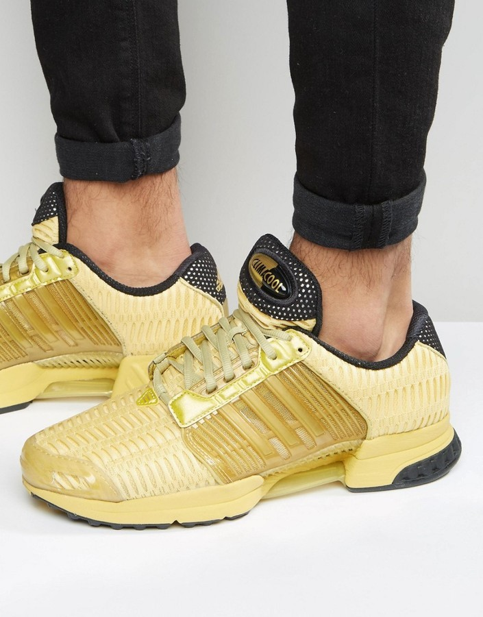 Adidas Climacool dorato