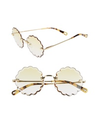 Chloé Rosie 53mm Scalloped Sunglasses