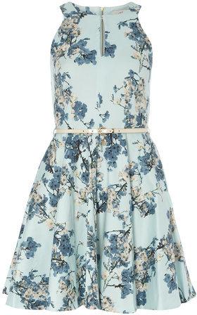 ... Dorothy Perkins Closet Pale Blue Floral Skater Dress 75545988d