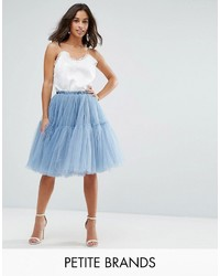 True Decadence Petite Tulle Skirt