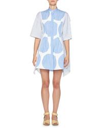 Stella McCartney Striped Polka Dot Shirtdress Bluewhite