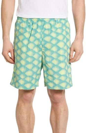 b8ab3700768e8 Columbia Pfg Backcast Ii Print Swim Trunks, $35 | Nordstrom ...