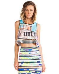 Clover Canyon Acropolis Garden Neoprene Crop Top