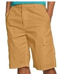 Lrg Shorts Core Collection Cargo Shorts