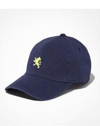 Express Small Lion Twill Baseball Hat