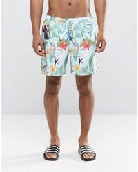 Pantalones cortos estampados en verde menta