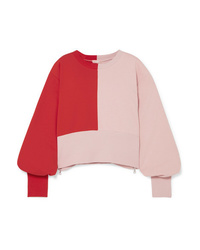 Vaara Mve Cropped Color Block Cotton Blend Jersey Sweatshirt