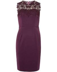 Showcase Plum Sophia Dress