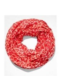 Express Leopard Infinity Scarf Red