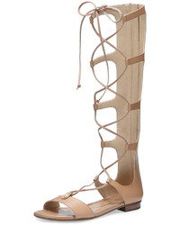 MICHAEL Michael Kors Michl Michl Kors Sofia Tall Flat Gladiator Sandal Suntan