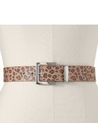 Leopard belt extended size medium 28675