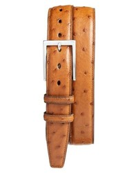 Torino Belts Ostrich Leather Belt