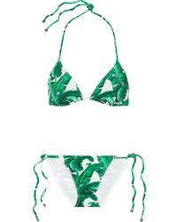 Top de bikini imprimé vert Dolce & Gabbana