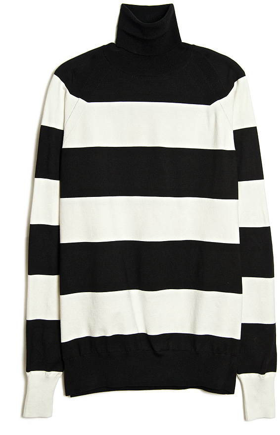 Wide Stripe Turtleneck Sweater. White and Black Horizontal Striped  Turtleneck by Stella McCartney
