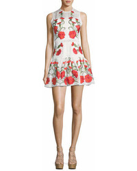Alexis Sabella Sleeveless Floral Embroidered Fit And Flare Linen Dress