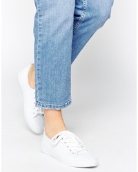Asos Collection Dagnall Canvas Lace Up Sneakers