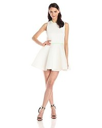 Honey mesh sleeveless fit and flare dress medium 232780