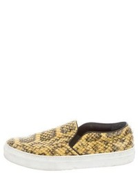 Celine Cline Python Slip On Sneakers